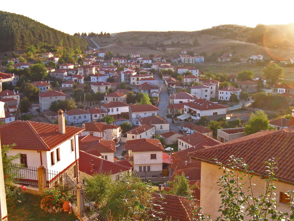 βλάστη dysi.gr