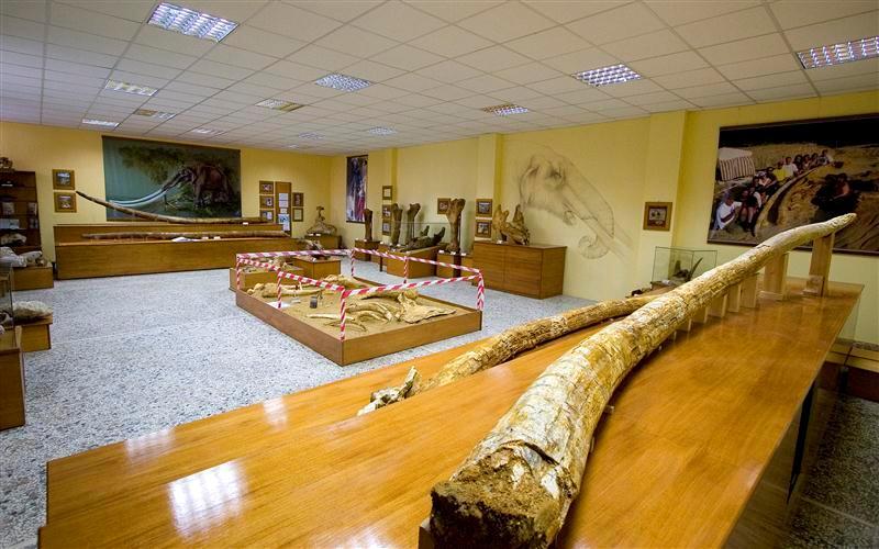 Μουσείο Φυσική Ιστορίας Μηλιάς